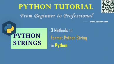 3 Methods to Format Python String